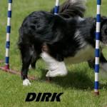 Dirk1 (1)