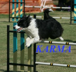 Karma_PAKOC Sept 2011_by Aine_n1 (1)