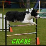 chase (1)